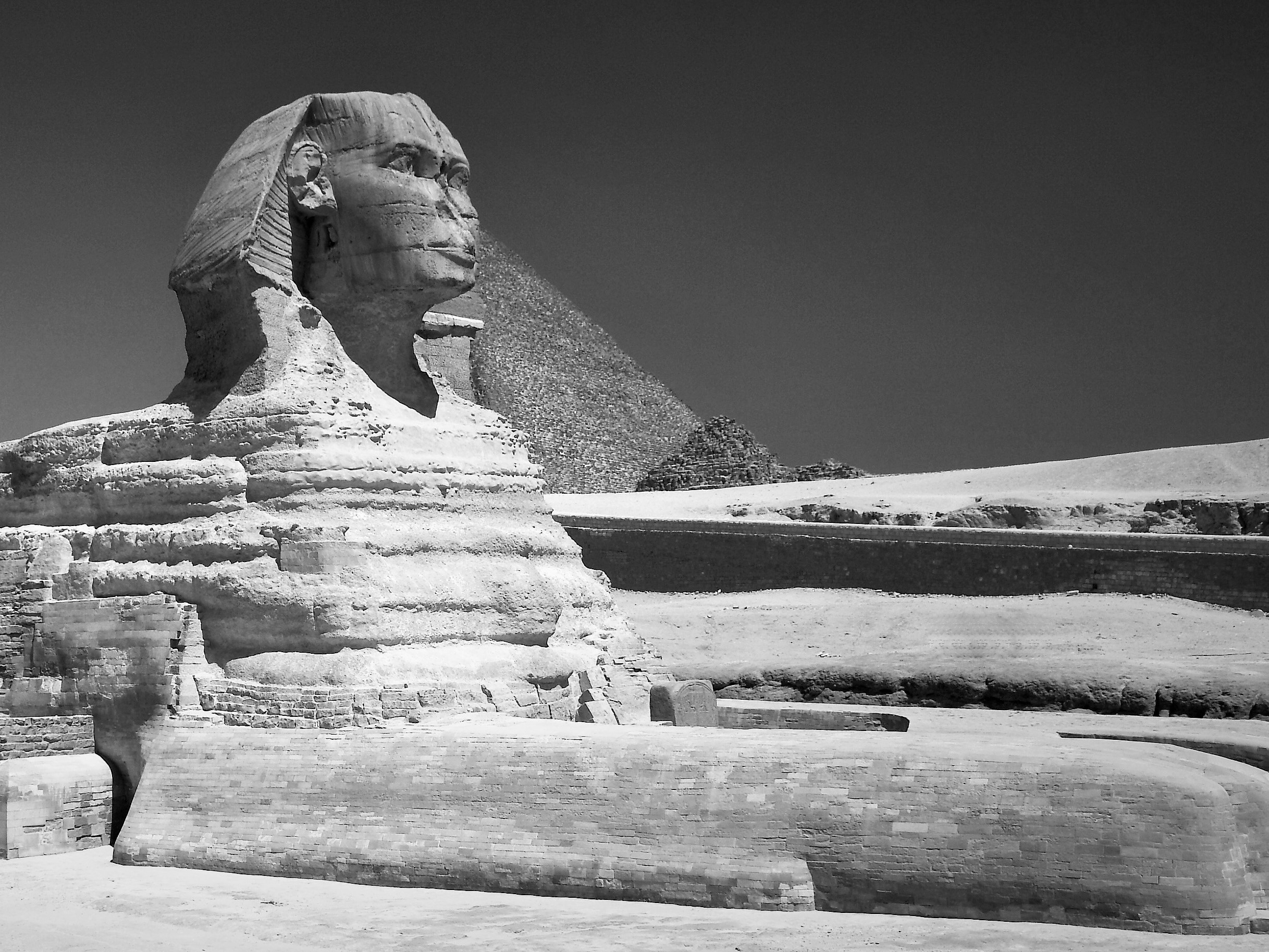 Great_Sphinx_of_Giza_-_20080716a (4).jpg