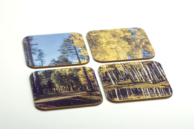 N A T U R E 0 1 / Elizabeth Azen, 2005.  Coasters, set of 4. MDF, digital prints, adhesive.