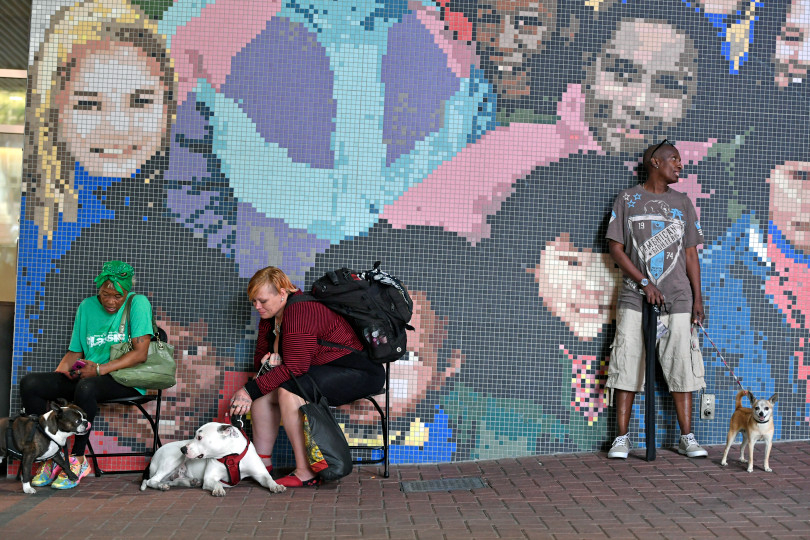 AVMA Street Clinic, July 17, 2018, Denver Convention Center. (Photos courtesy Denver Post) Mural II.jpeg