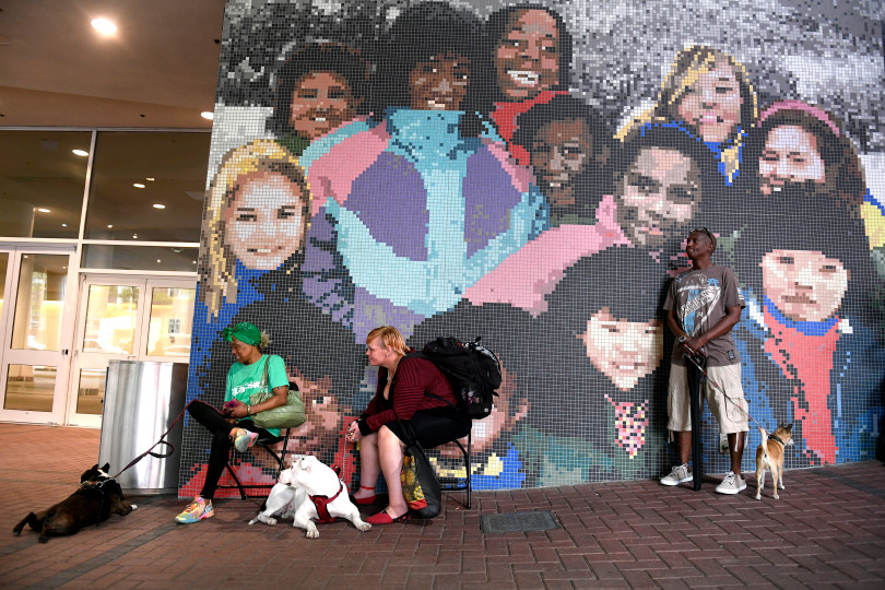 AVMA Street Clinic, July 17, 2018, Denver Convention Center. (Photos courtesy Denver Post) Mural.jpeg