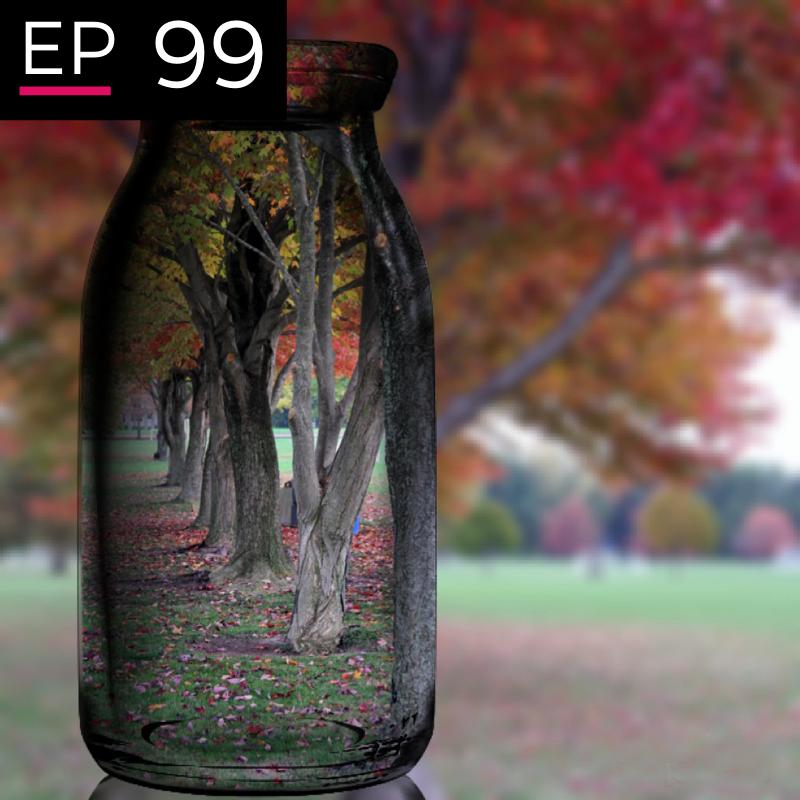 EP 99: The Universal Perspective - Erik Overland