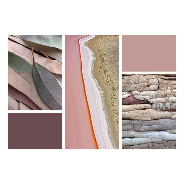 Aus colour palette action // images via Pinterest . . . . . #design #illustration #aotd #australiandesign #graphicdesign #sydneydesign #australia #colourpalette