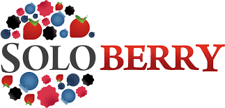 Soloberry logo.png