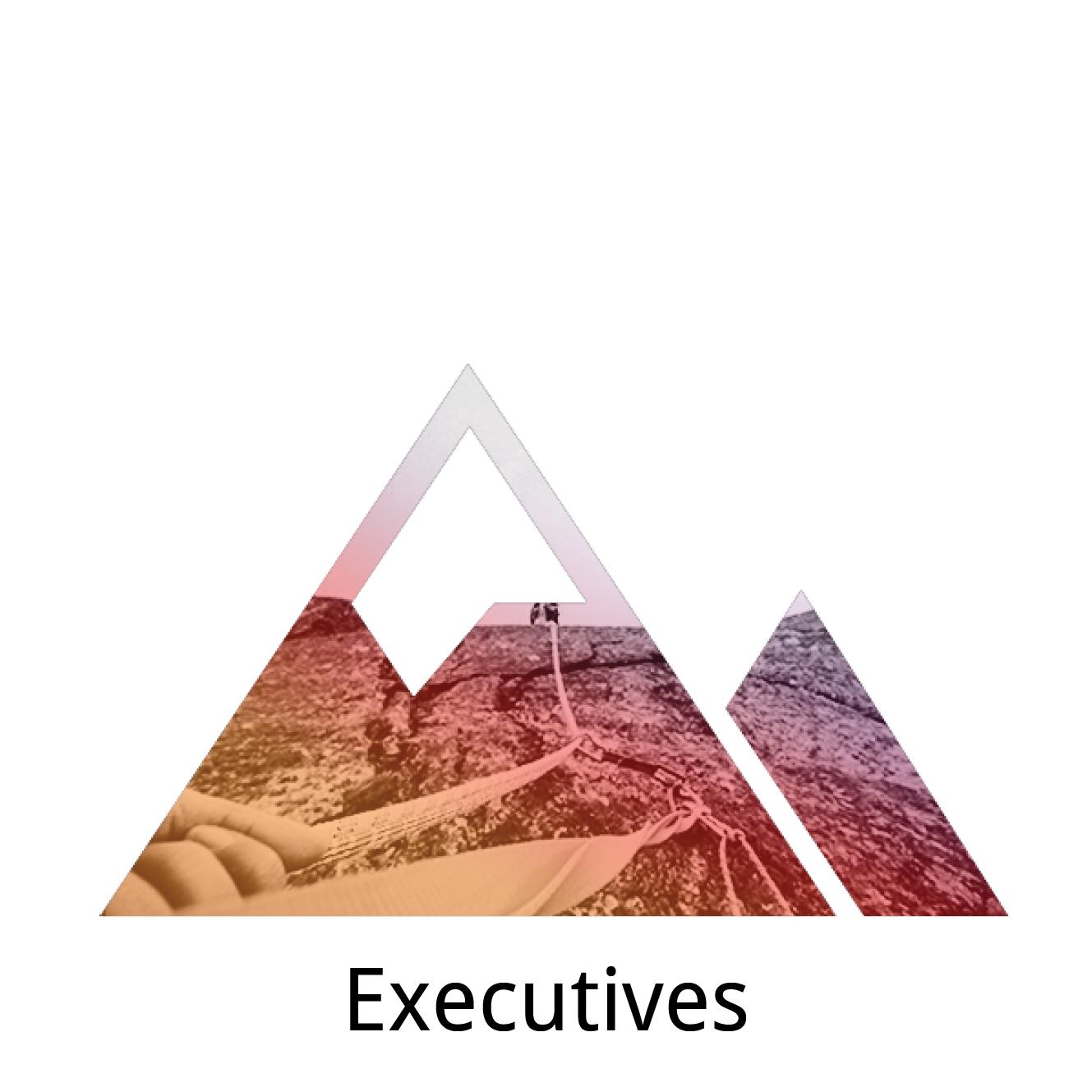 Executives gateway.png