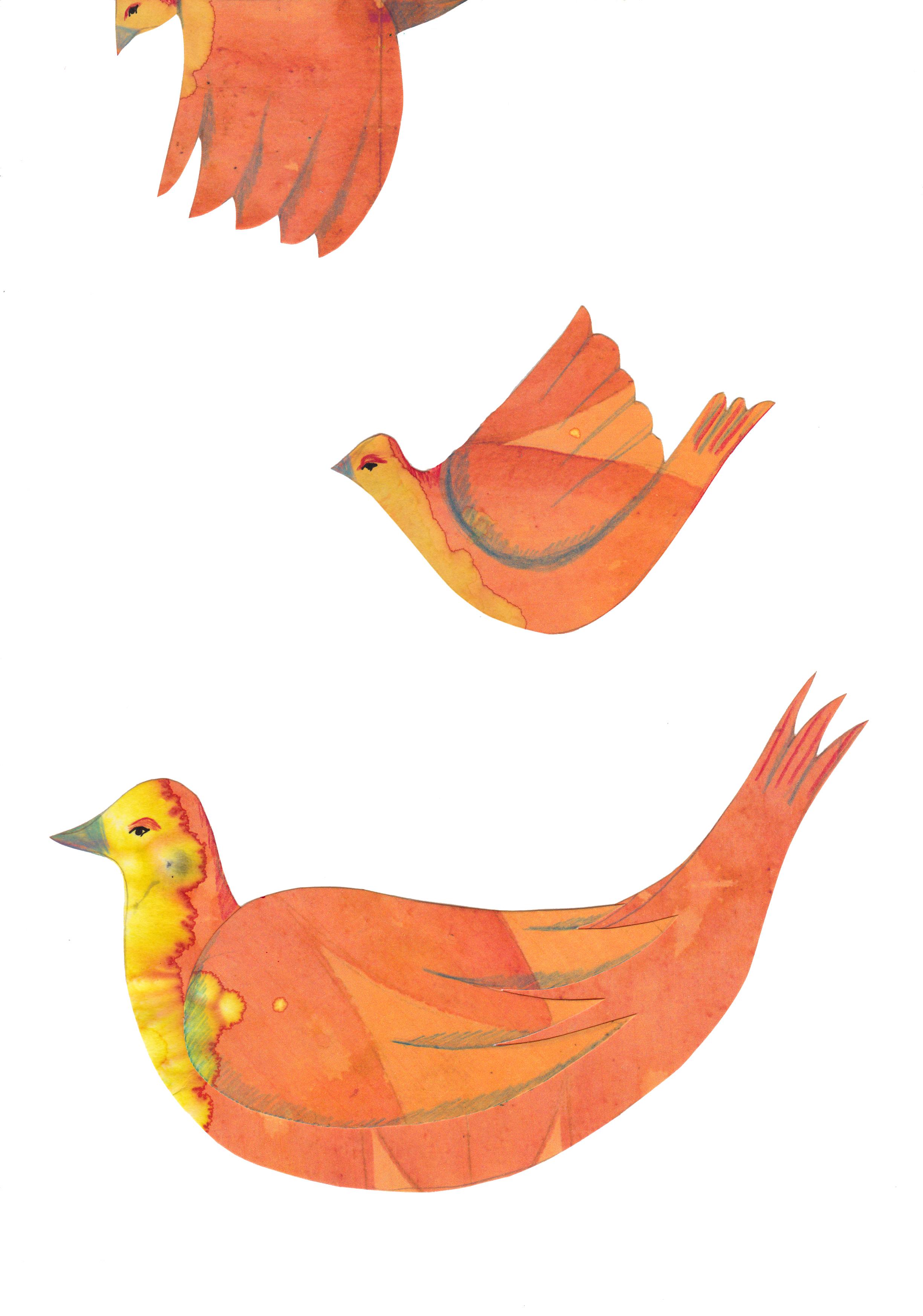 birds layer.jpg
