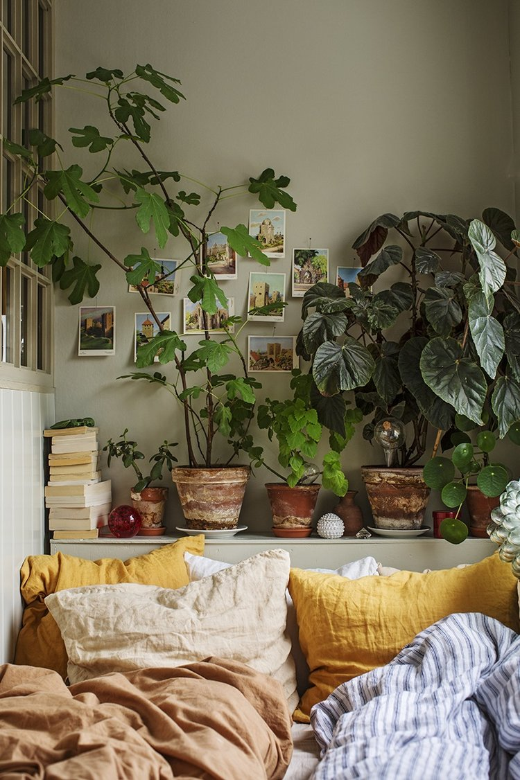 Ledge with plants (The Nordroom - Creative Headboard and Bedroom Styling Ideas)