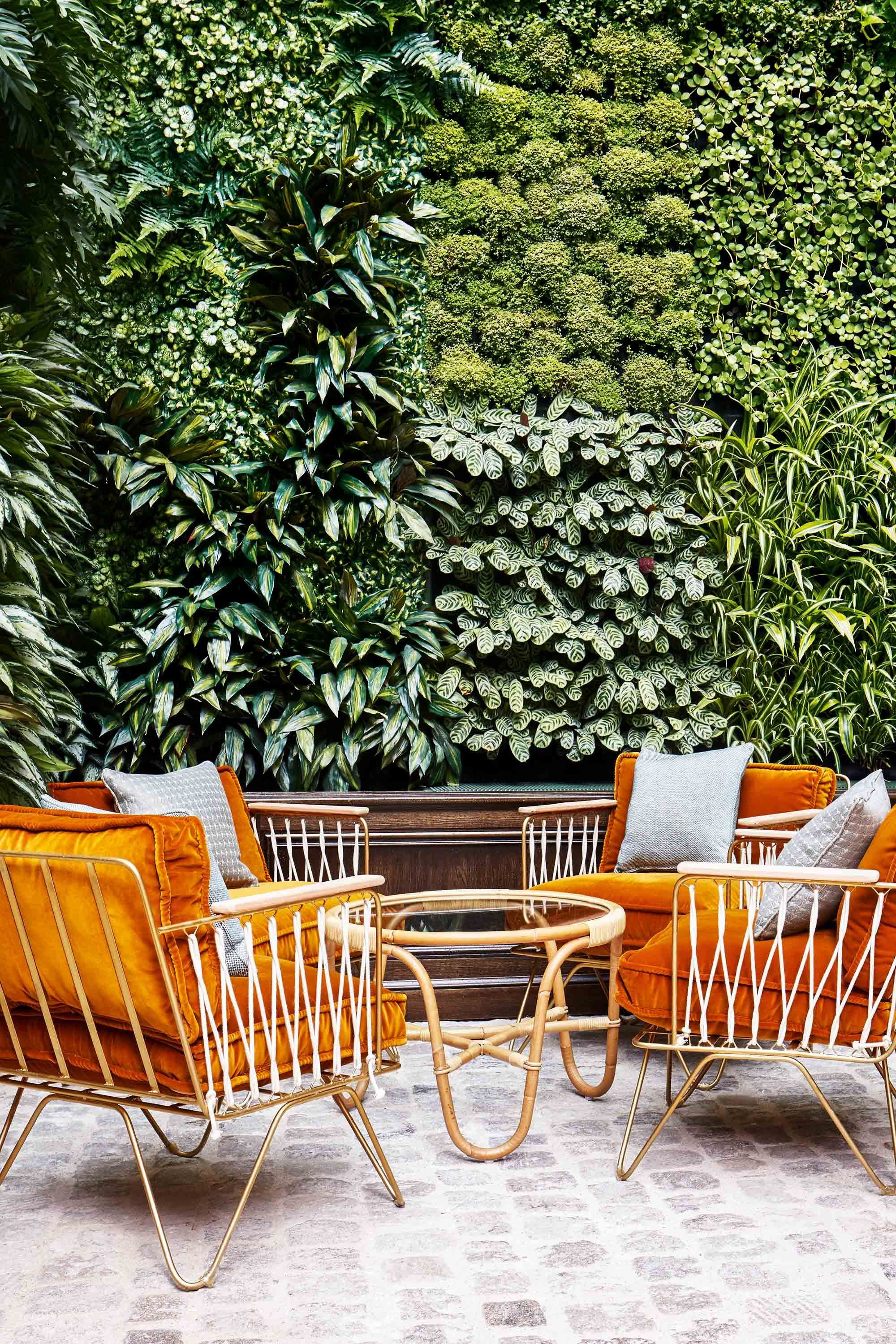 Rattan and mustard velvet at hotel    The Hoxton in Paris