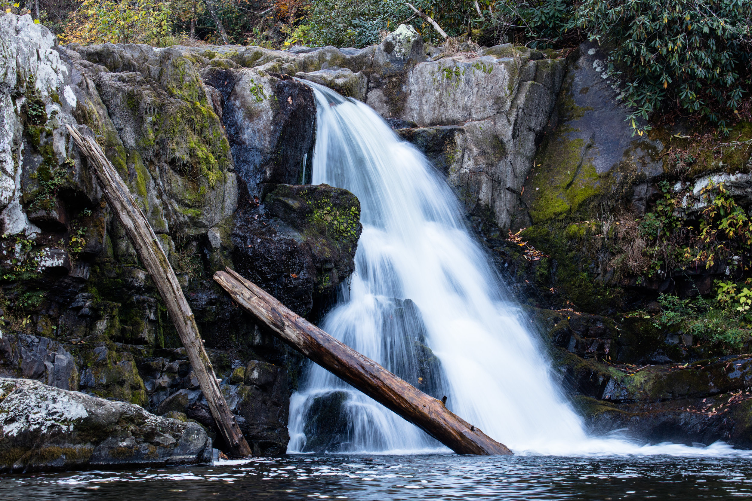 Abrams falls is the reward for a long hike up and down a couple of mountain ridges. Great place to sit and relax before tackling the walk back out to the cove.