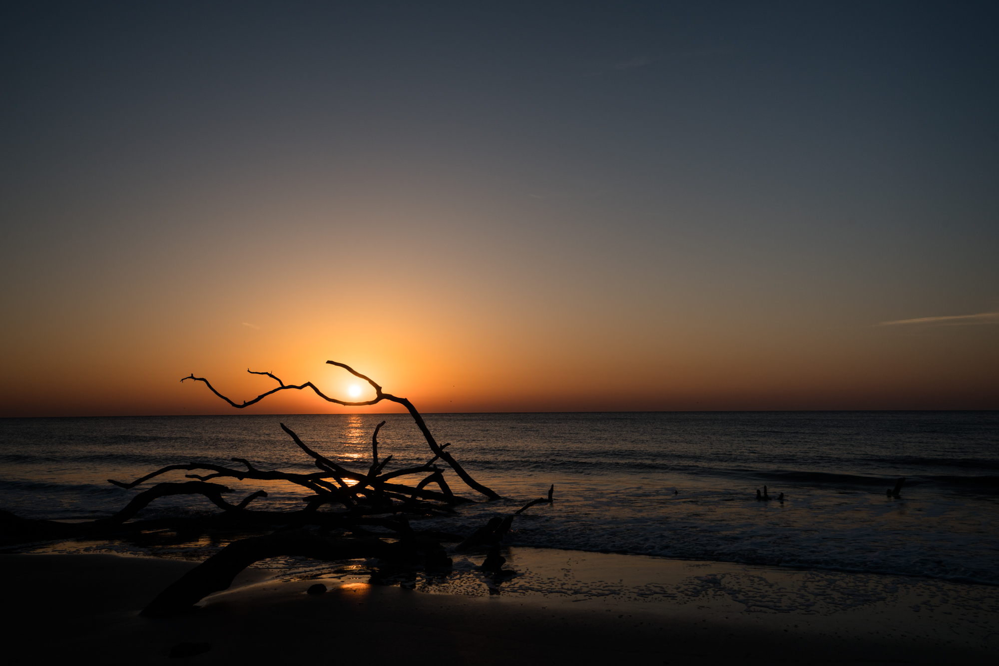 Sunrise on the beach at Hunting Island State park. Get out early, it is worth it.