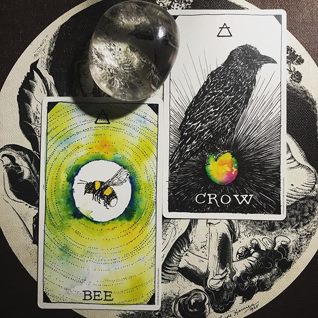 One of my best buddies gave me the animal spirit deck from the illustrious @kim_krans mother of @the_wild_unknown for my birthday. It's been on my list for a long, long time. Super stoked to add it to my daily ritual. Do you pull cards daily? I do 2 every day and now I'll probably add a daily beast as well. I had a dope birthday. Hope y'all had a good week! 🖤🌈 . . . . . . . . #wishyouwerequeer #neworleans #neworleansmagic #womenownedbusiness #supportwomen  #neworleansbusiness #realmagicskincare #sabbathwolfe #frenchquarter #thismagicmoment #nolabusinesswomen #nolalove #nolamade #handmade #supportsmallbusiness #shoplocal #tarotreadings #tarot #femme #healthylifestyle #holistic #organic #twu #thewildunknown #animalspirit