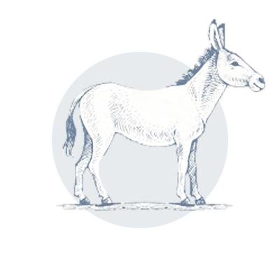 bluemont-vineyard-donkey-icon-watermark-7.jpg
