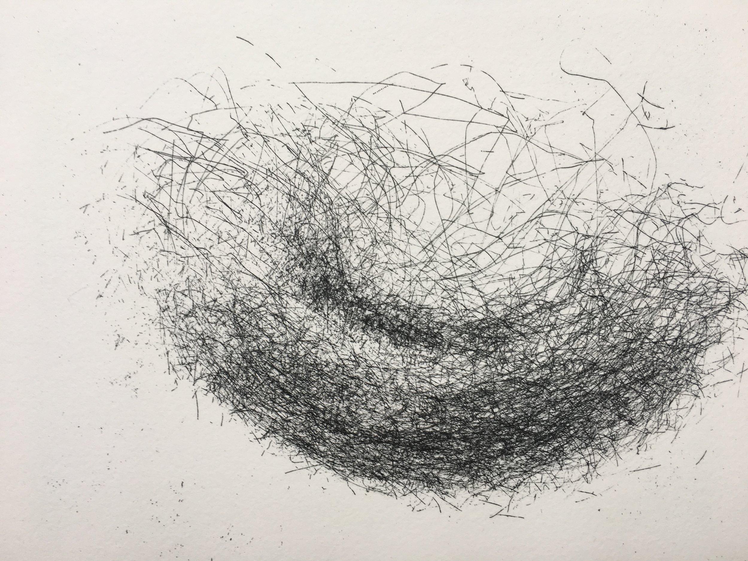 Geraldine van Heemstra - Skye Sequence I # 1, 2018, Hardground etching, 19 x 29 cm (detail).jpg