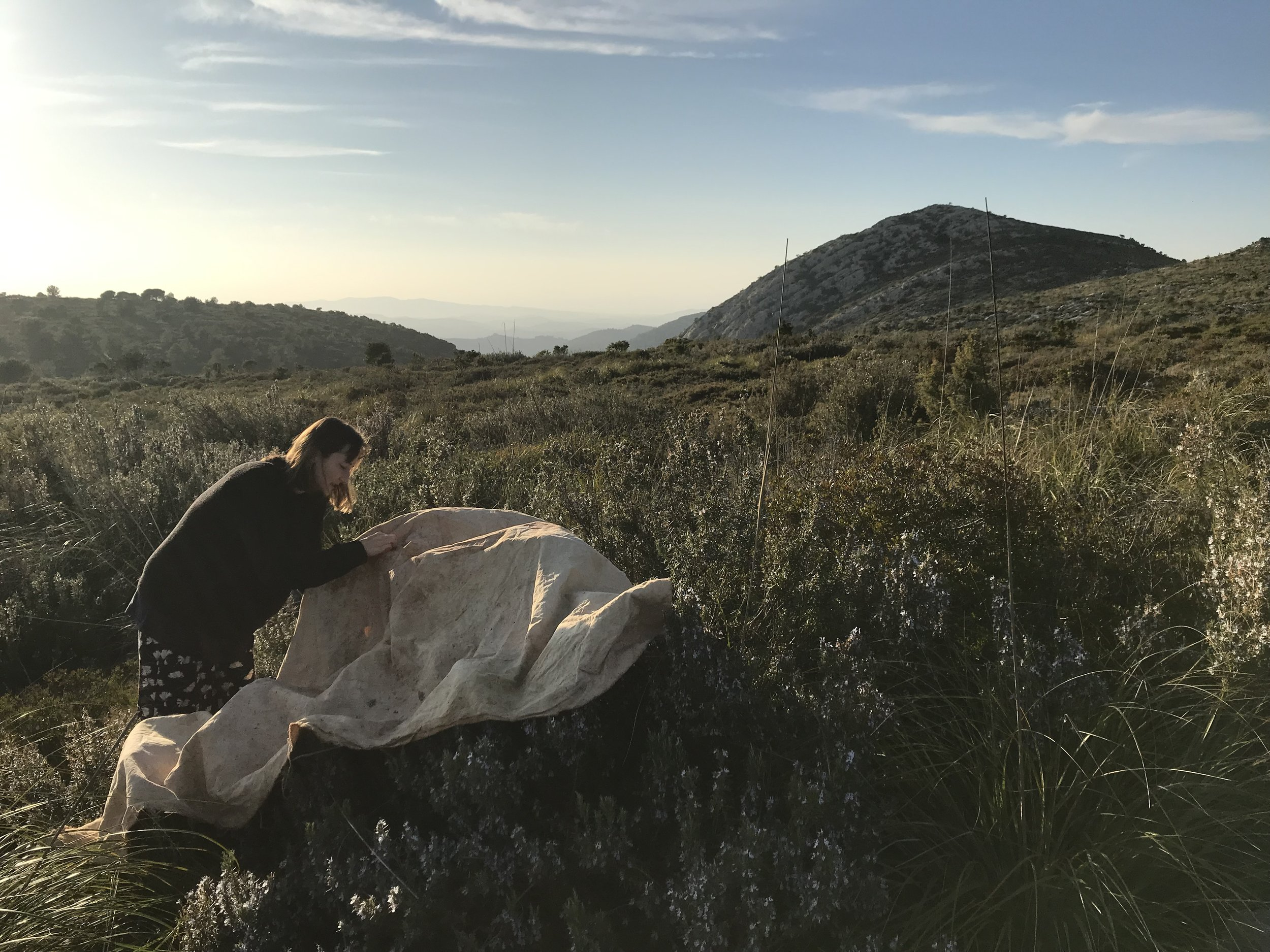 Landscape Blanket process