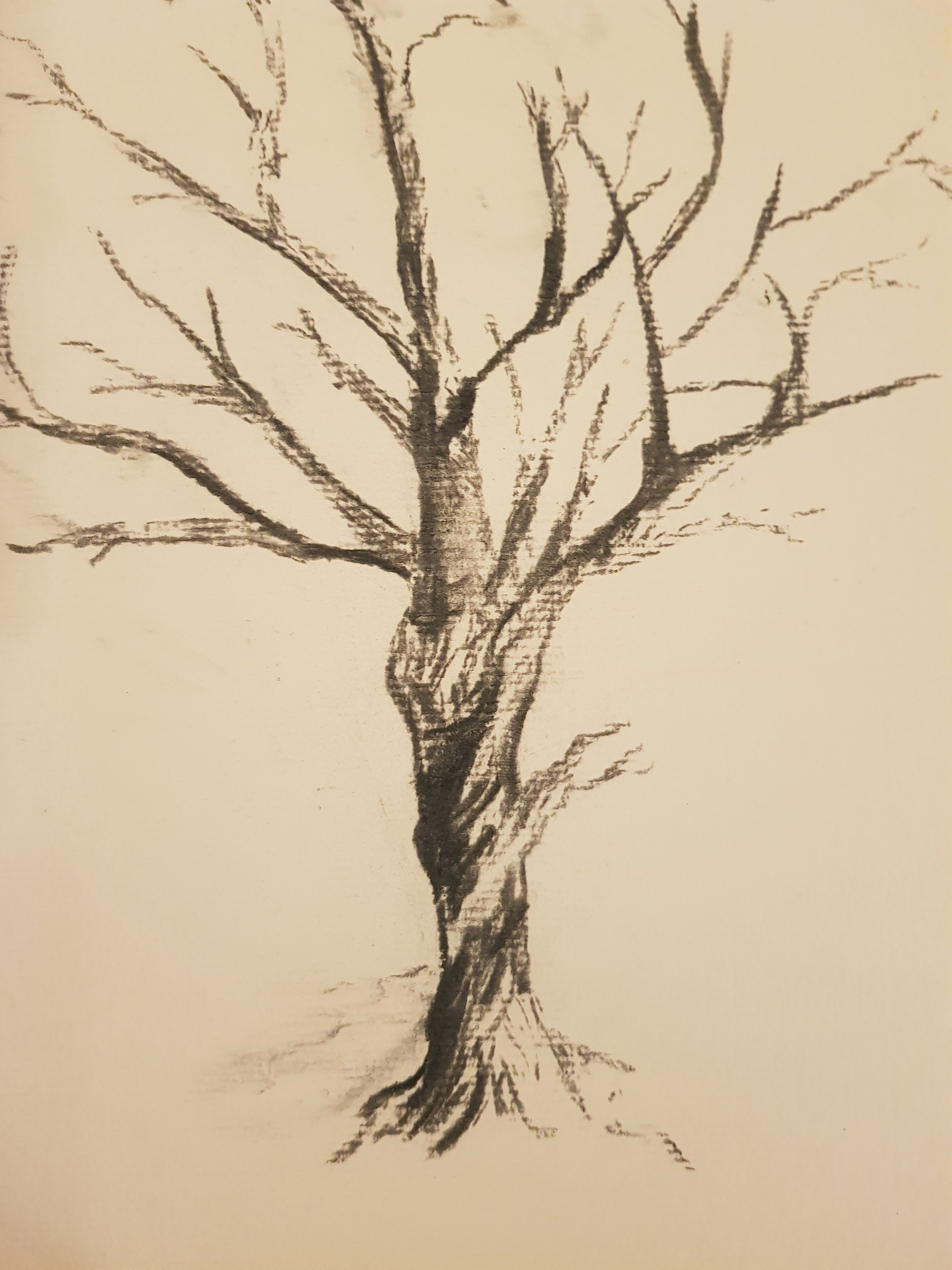 First charcoal. March 2018