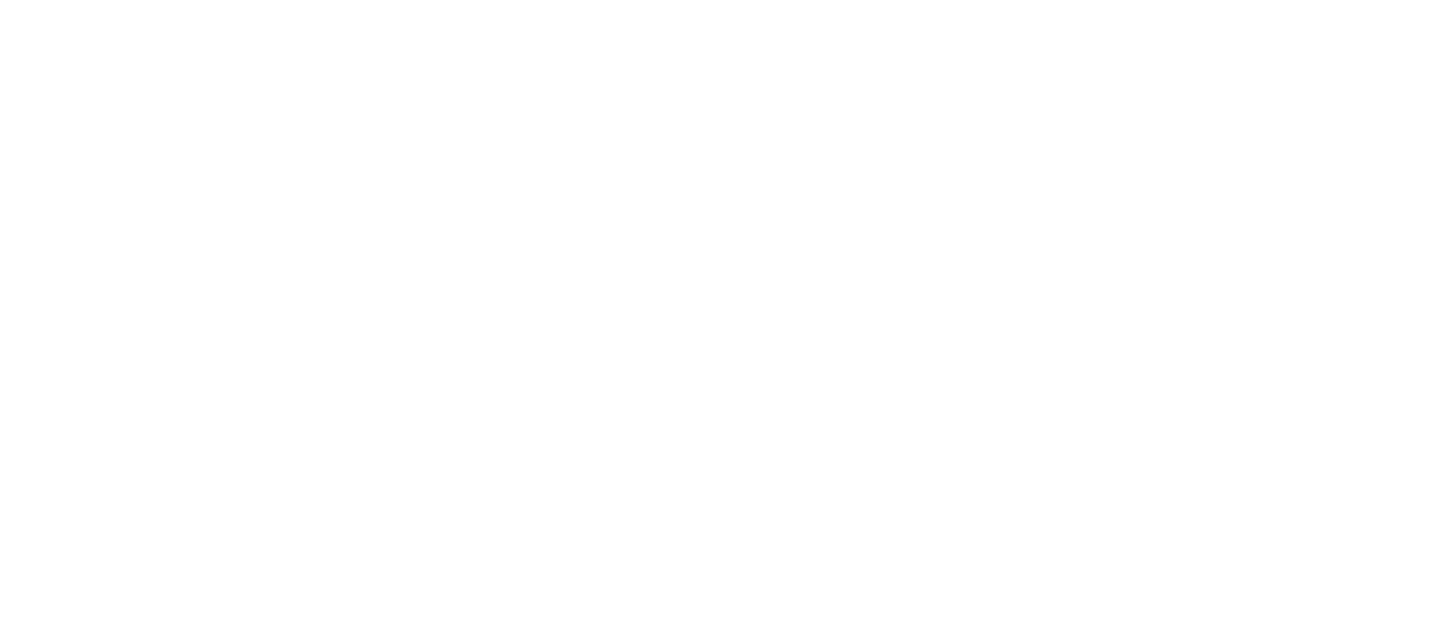 logo reverse wide.png