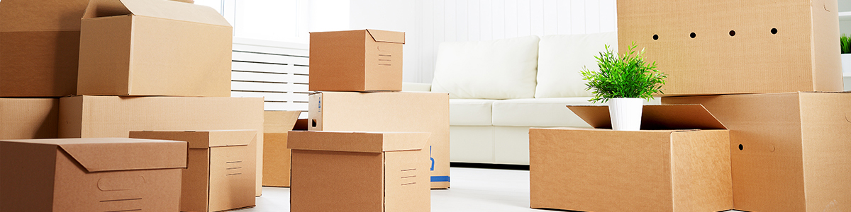 LivingRoom-MovingBoxes-1200.jpg