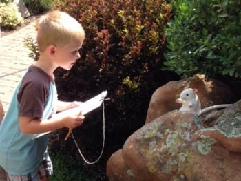 A child enjoys a Kid's Corner activity in the garden.