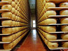 220px-Parmigiano_reggiano_factory.jpg