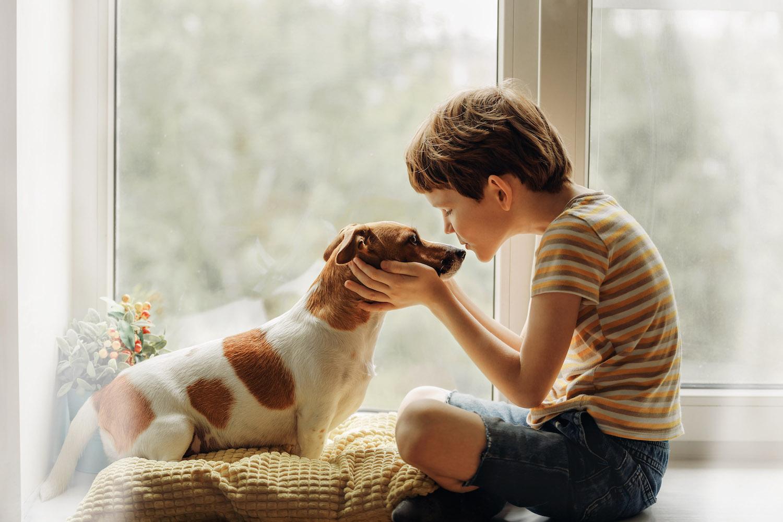 istock - boy with dog.jpeg