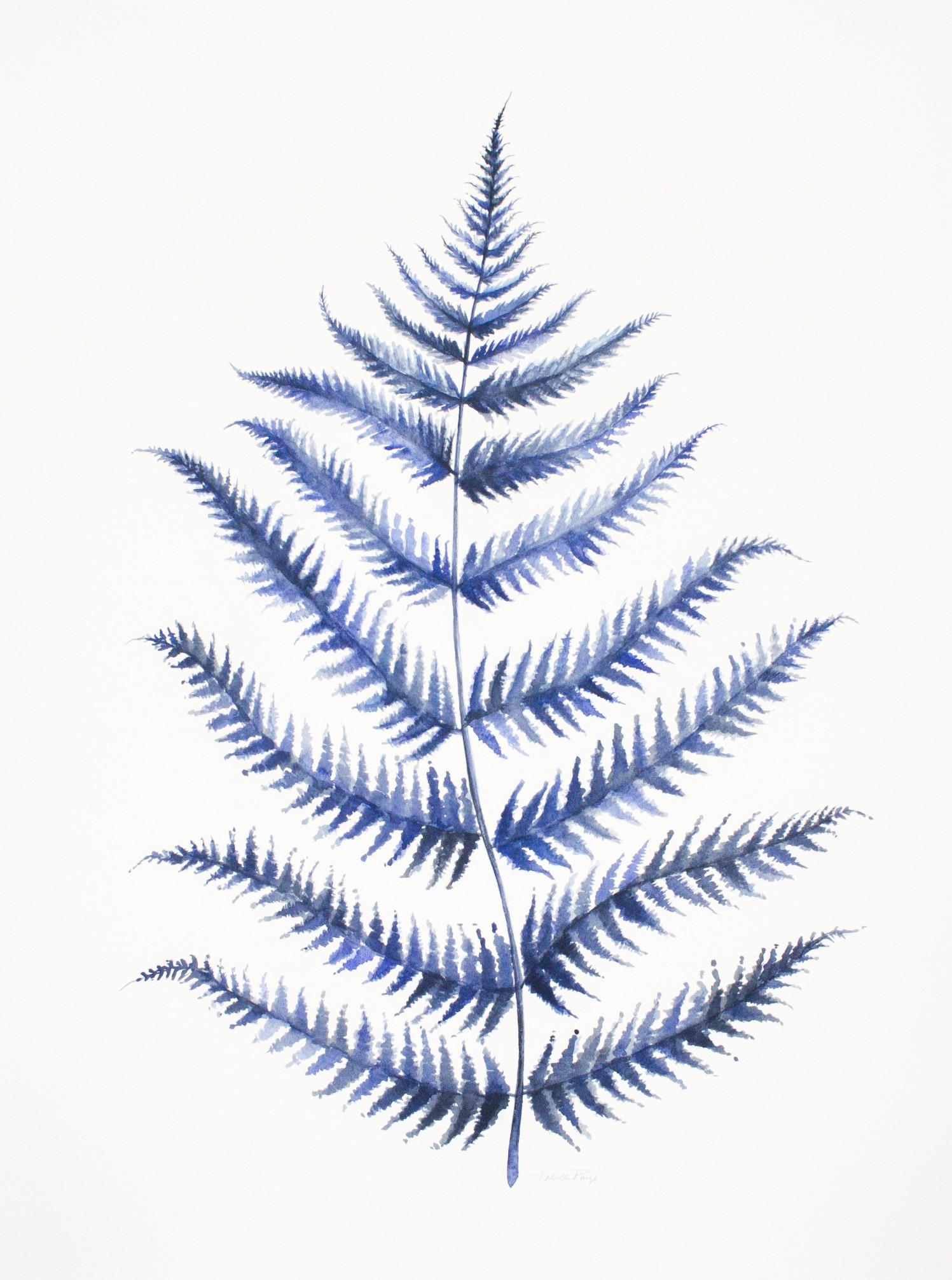 fern watercolors-6226.jpg