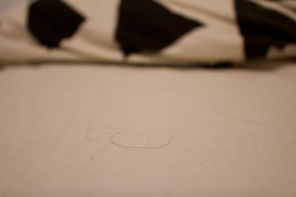 partakarva sängyssä.png