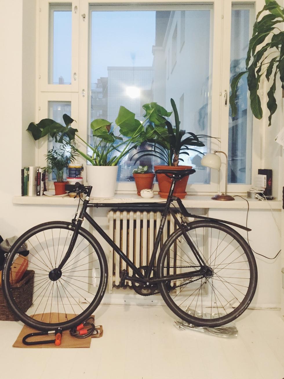 pyörä.jpg