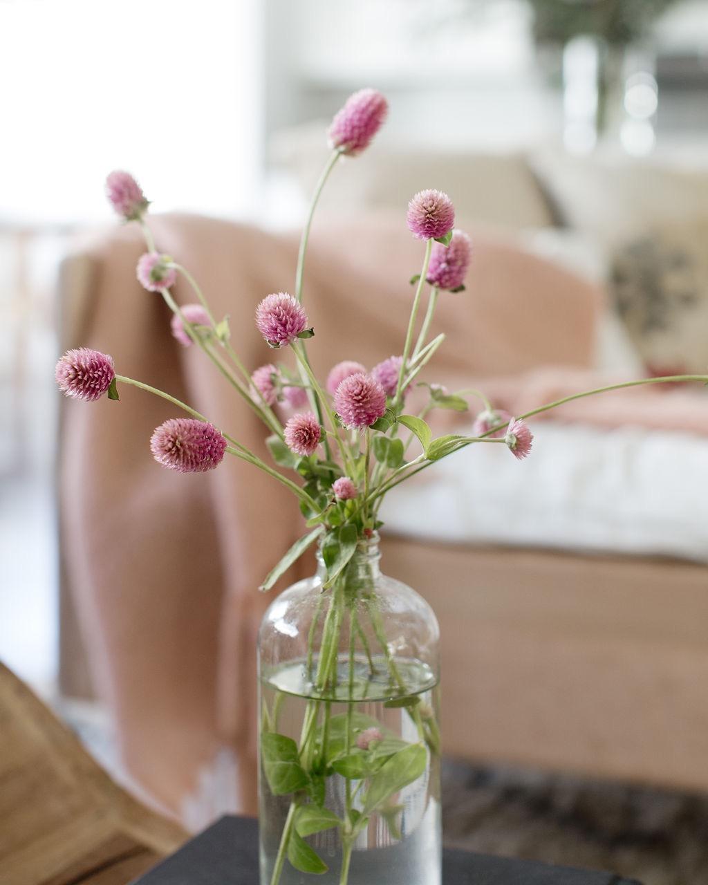 los angeles interior designer casual comfortable clover