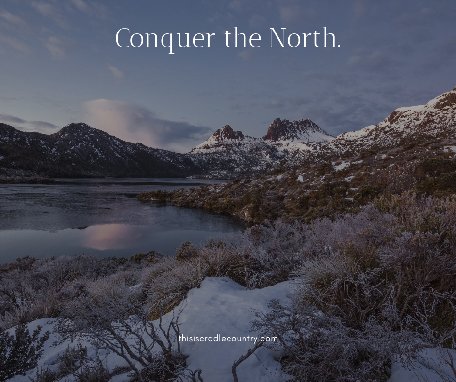 Client Campaign: Conquer the North, 2019.