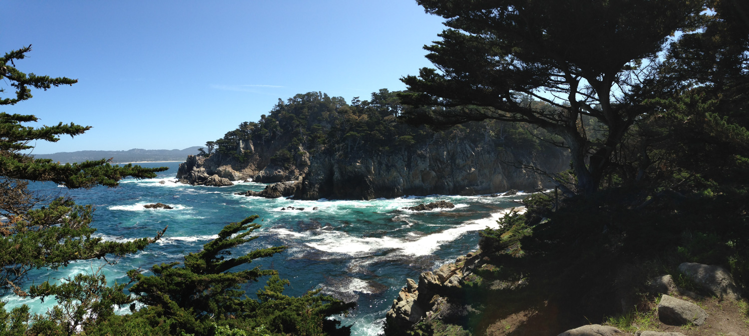 Point Lobos pic_to see.jpg