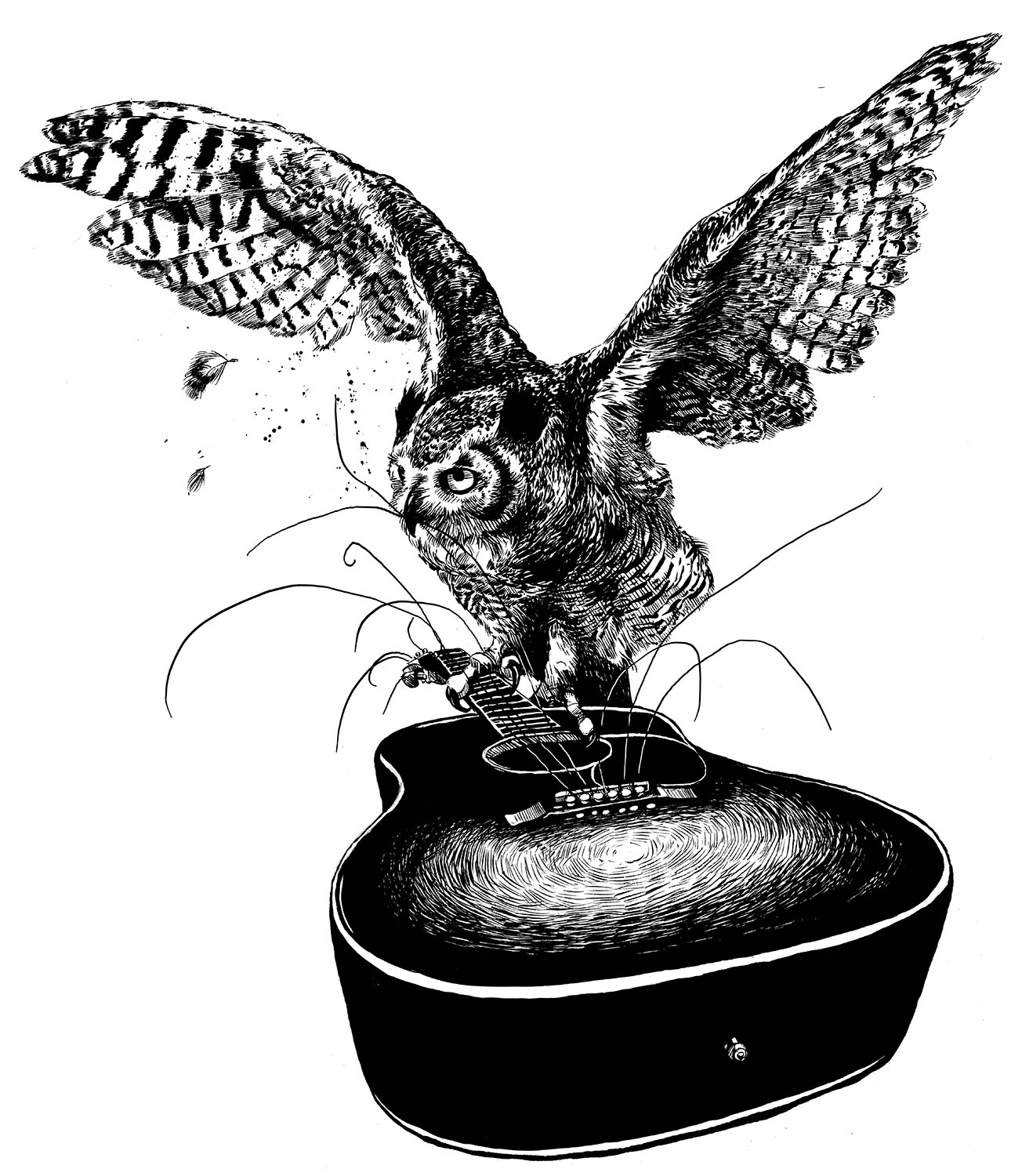 Great-Horned Owl with Acoustic Guitar for Corey Shields Album Artwork, 2017