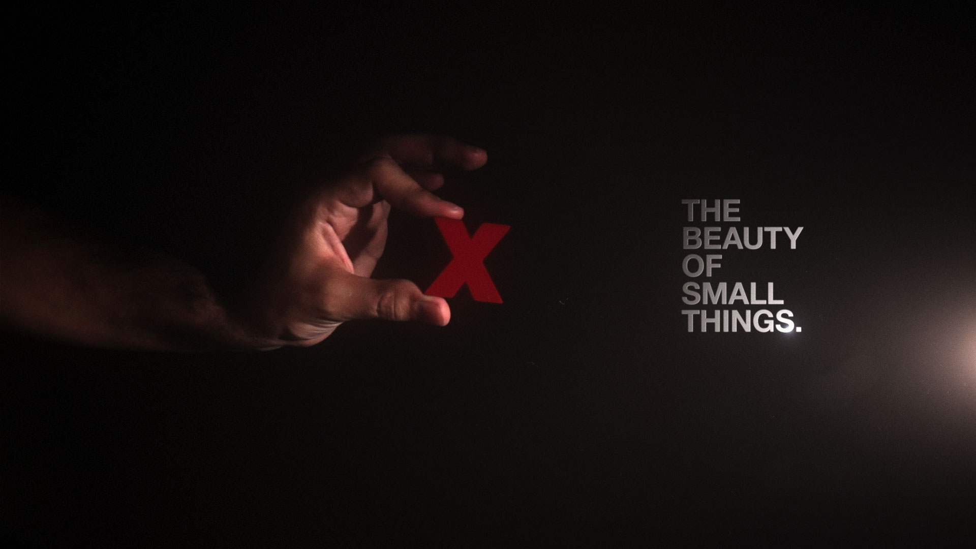 TEDxDUBAI    THE BEAUTY OF SMALL THINGS