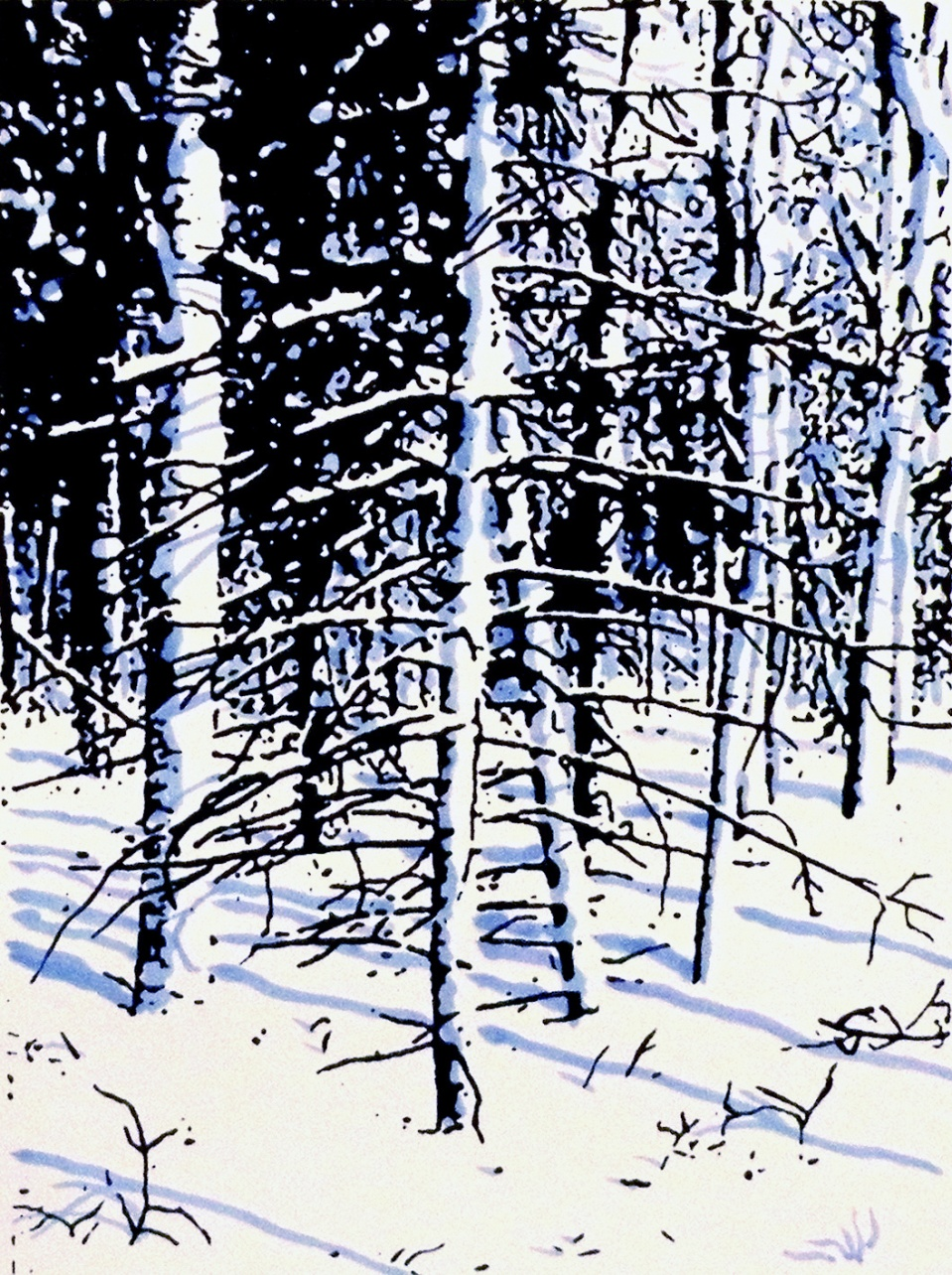 SNOW DAY, 2009, 1 color silkscreen with hand addition, 10 1/2 x 8, Edition of 25
