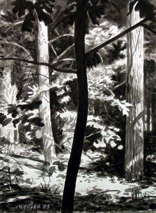 ROOD, 2003, ink on paper, 24 x 18