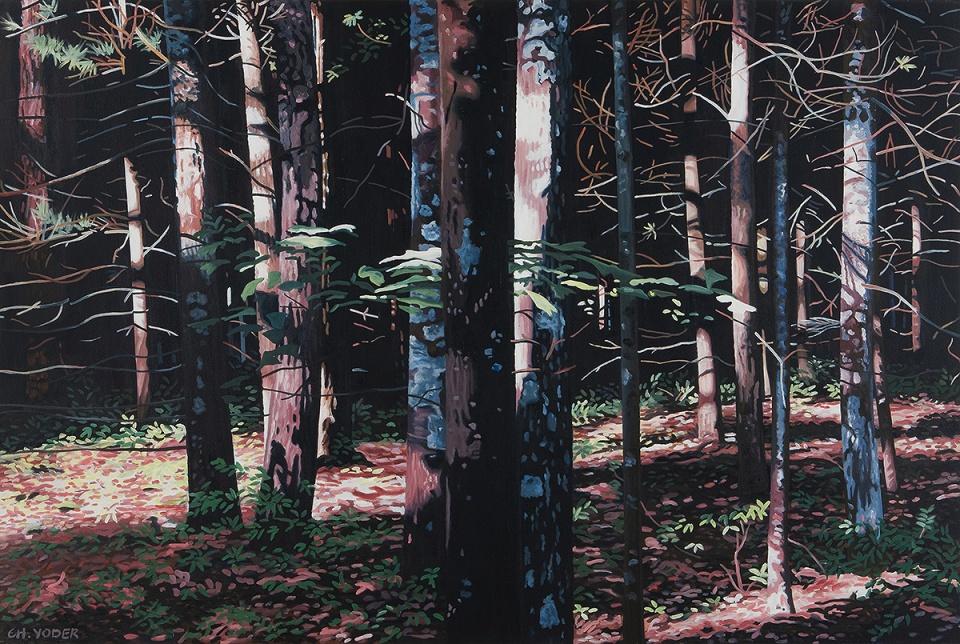 SLIP SLIDE, 2006, oil on canvas, 40 x 60