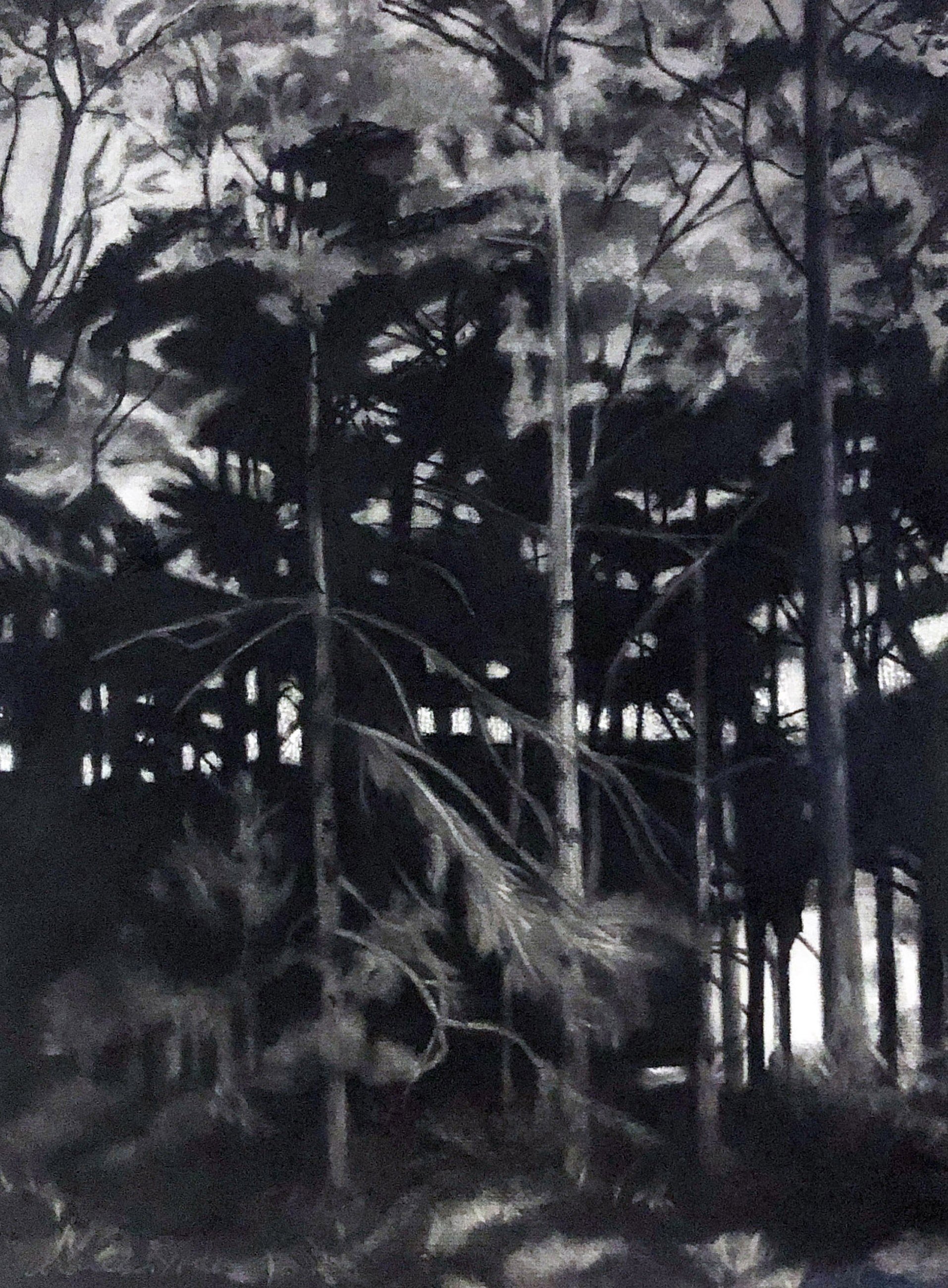 "NEIGHBOR HOOD, 2019, Charcoal on paper, 22 1/4"" x 16 1/2"" unframed, 28 1/2"" x 21 1/2"" framed"