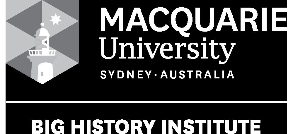Big History Institute