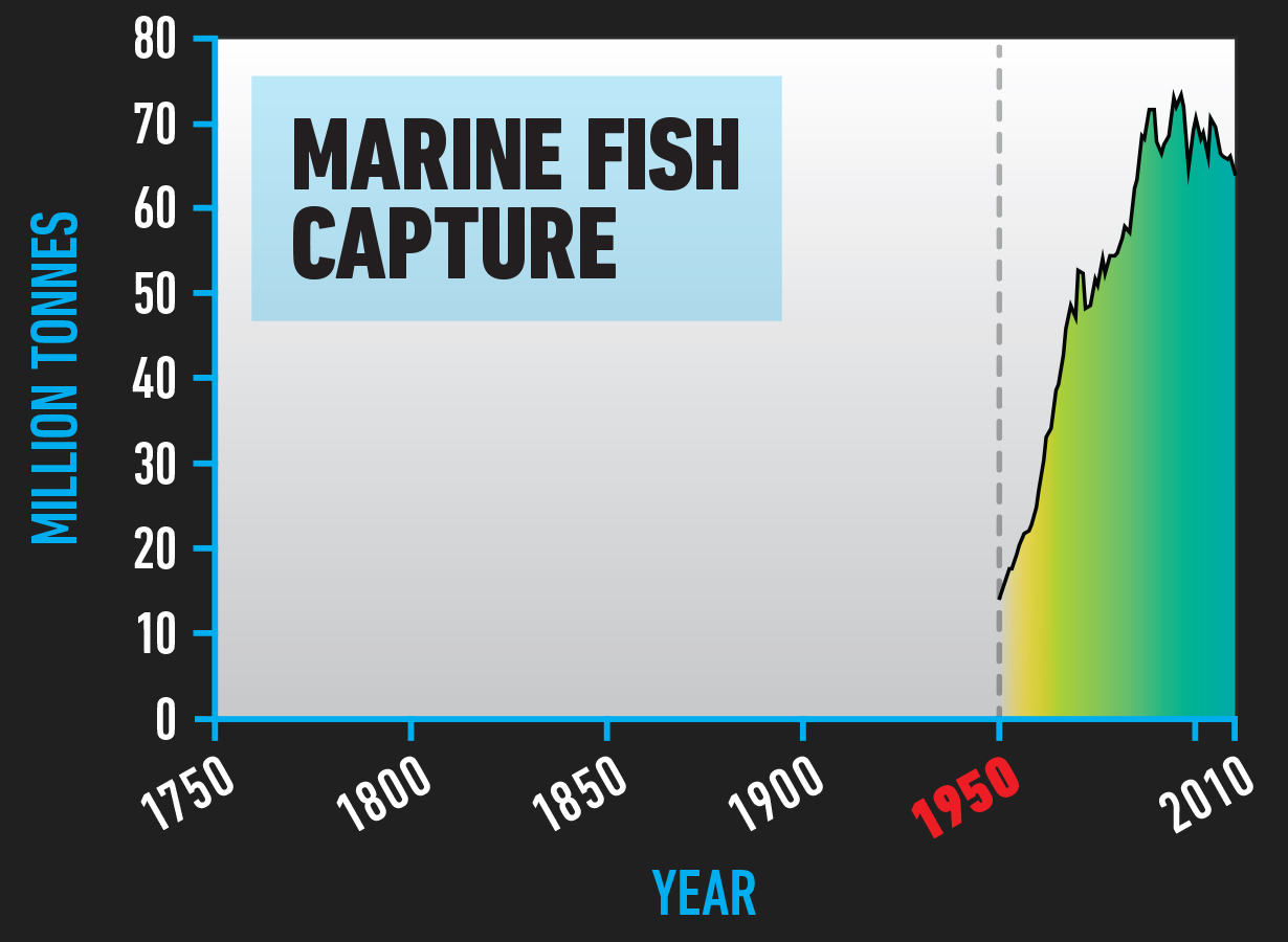 BIO_Marine_Fish_Capture.jpg