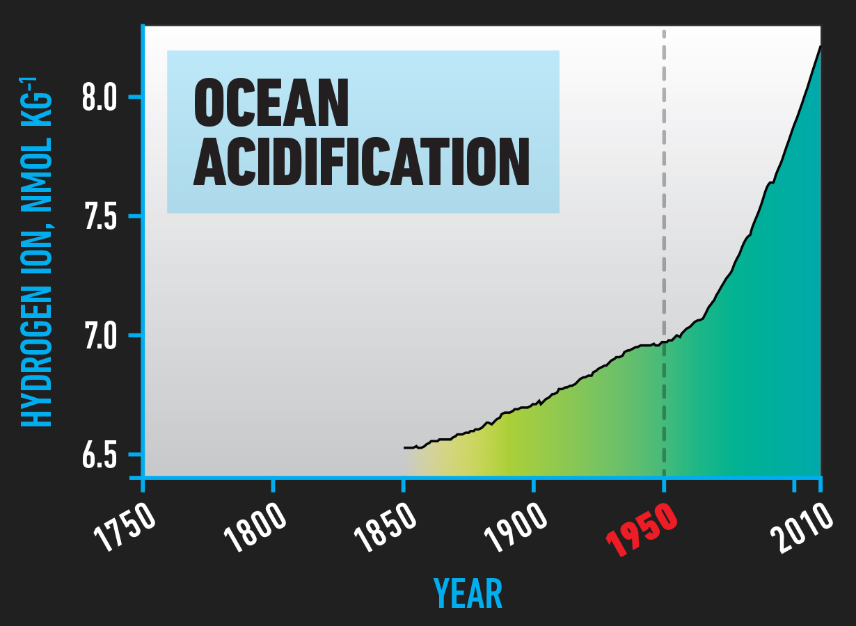 BIO_Ocean_Acidification.jpg