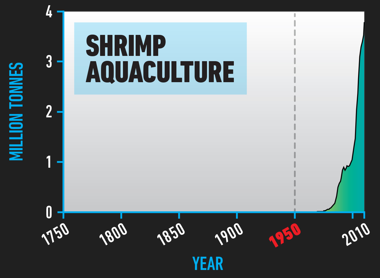 BIO_Shrimp_Aquaculture.jpg