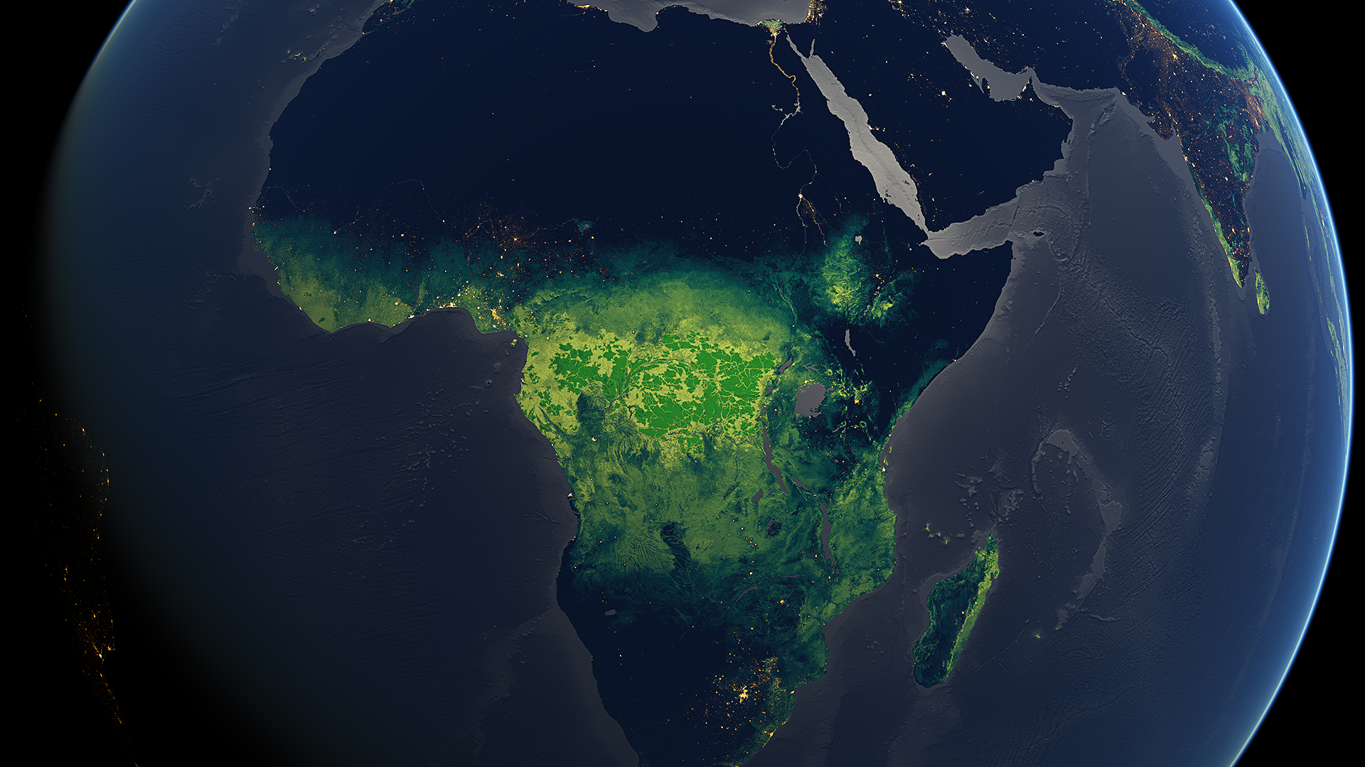 Forested Africa