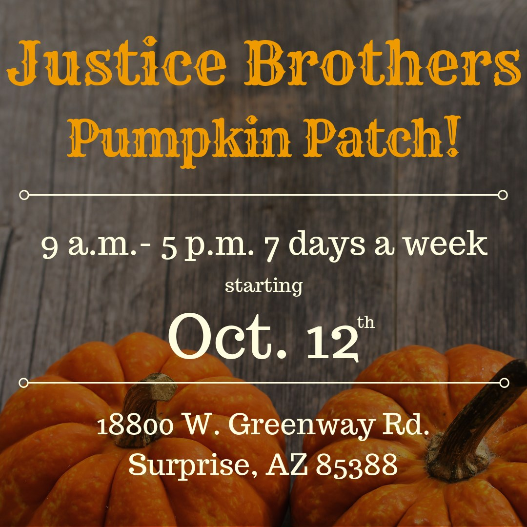 - Our pumpkin patch, featuring Arizona grown pumpkins including specialty looks, will run 9 a.m. to 5 p.m. daily Saturday, Oct. 12, through at least Friday, Nov. 1.Use the button below to get more details.