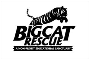 Big Cat Rescue.png