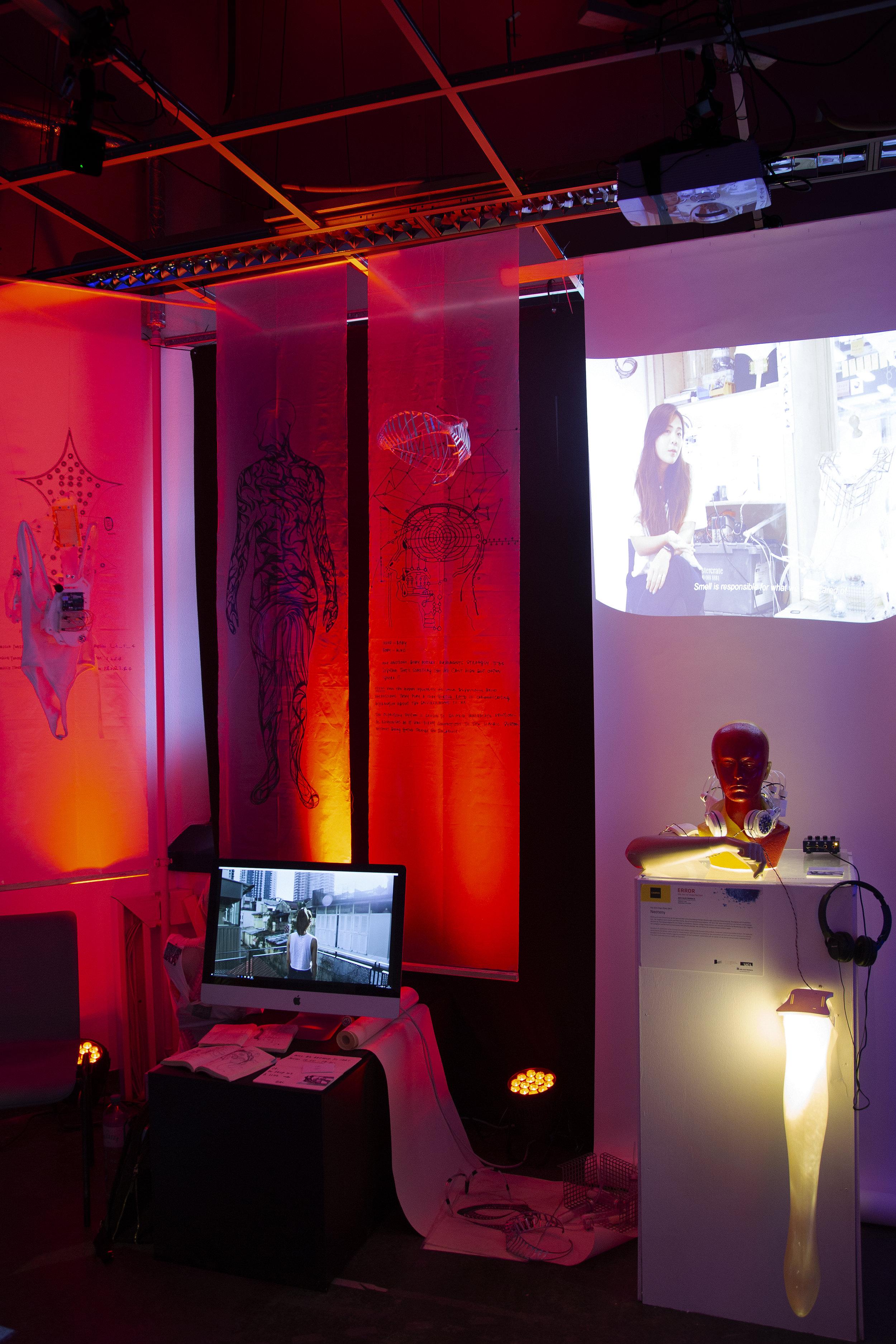Ars Electronica 2018, Linz, Austria