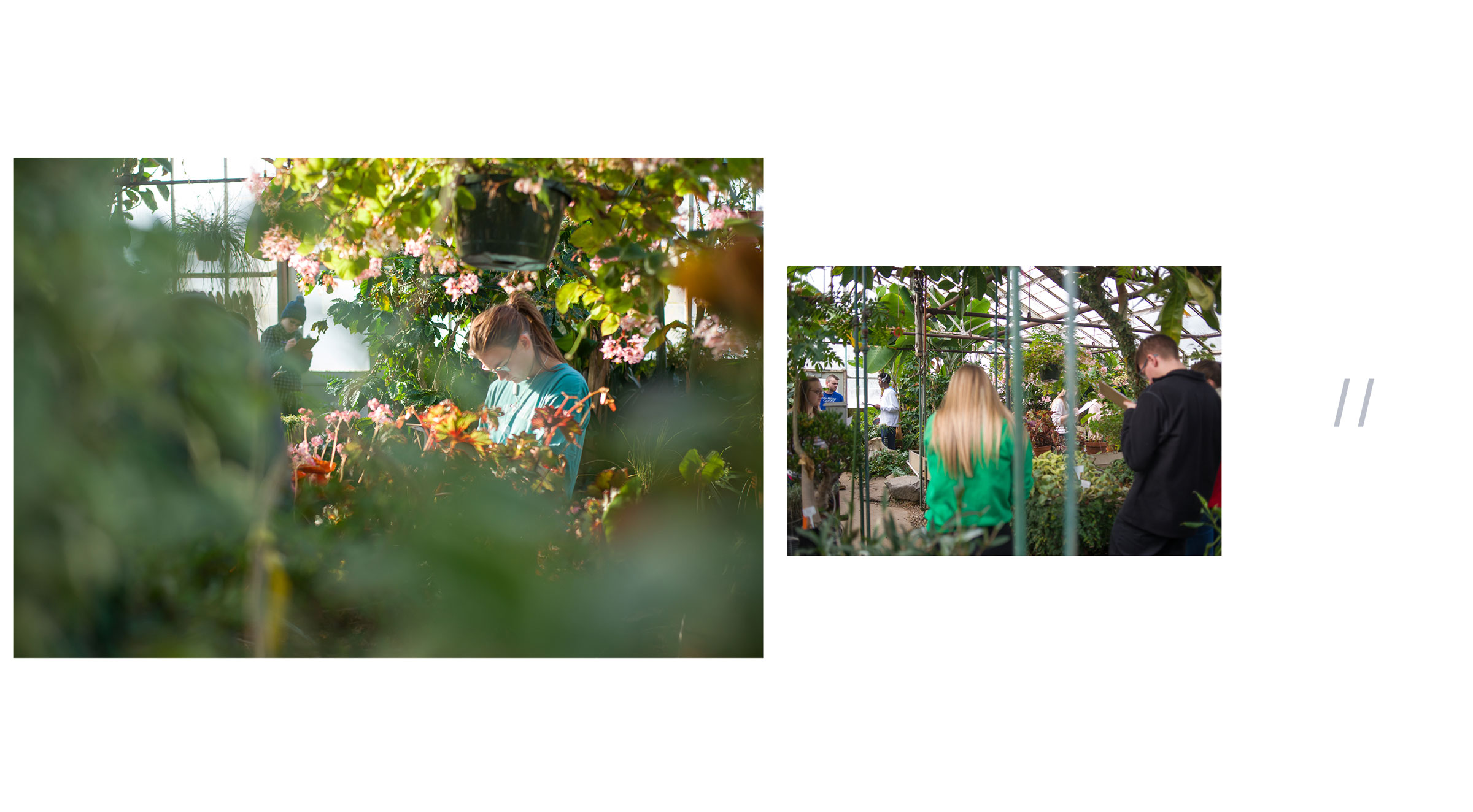 Loren-Marple_Photography_UNH-Bio-Class-Greenhouse_gallery.jpg