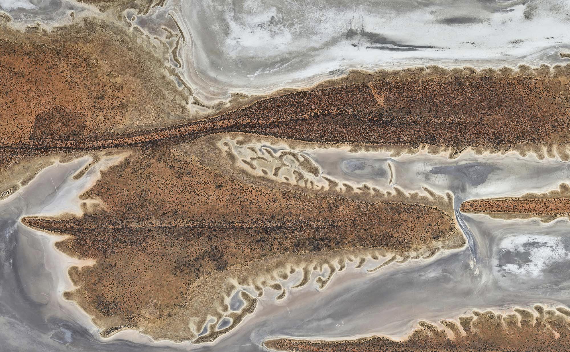 Crustaceons 2018