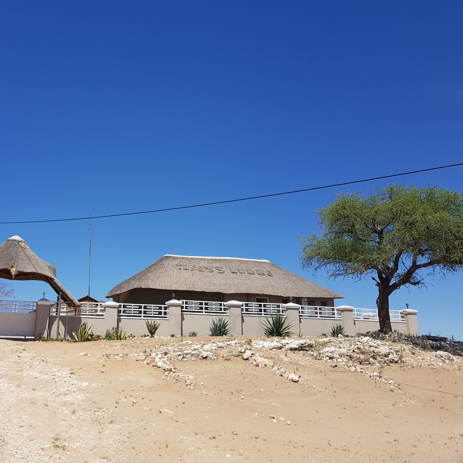 Tokey´s Lodge - Service Description∙ Accomodation, Bar, Restaurant, Conference and Catering ServicesOpening Hours:Monday - Friday: 06:00-06:00Saturday: 06:00-06:00Sunday: 06:00-06:00Directions:Behind Main KgotlaModimo WardContact: Mr. Tsietso📞 (+267) 73 06 46 99✎ tockeys.info@gmail.com