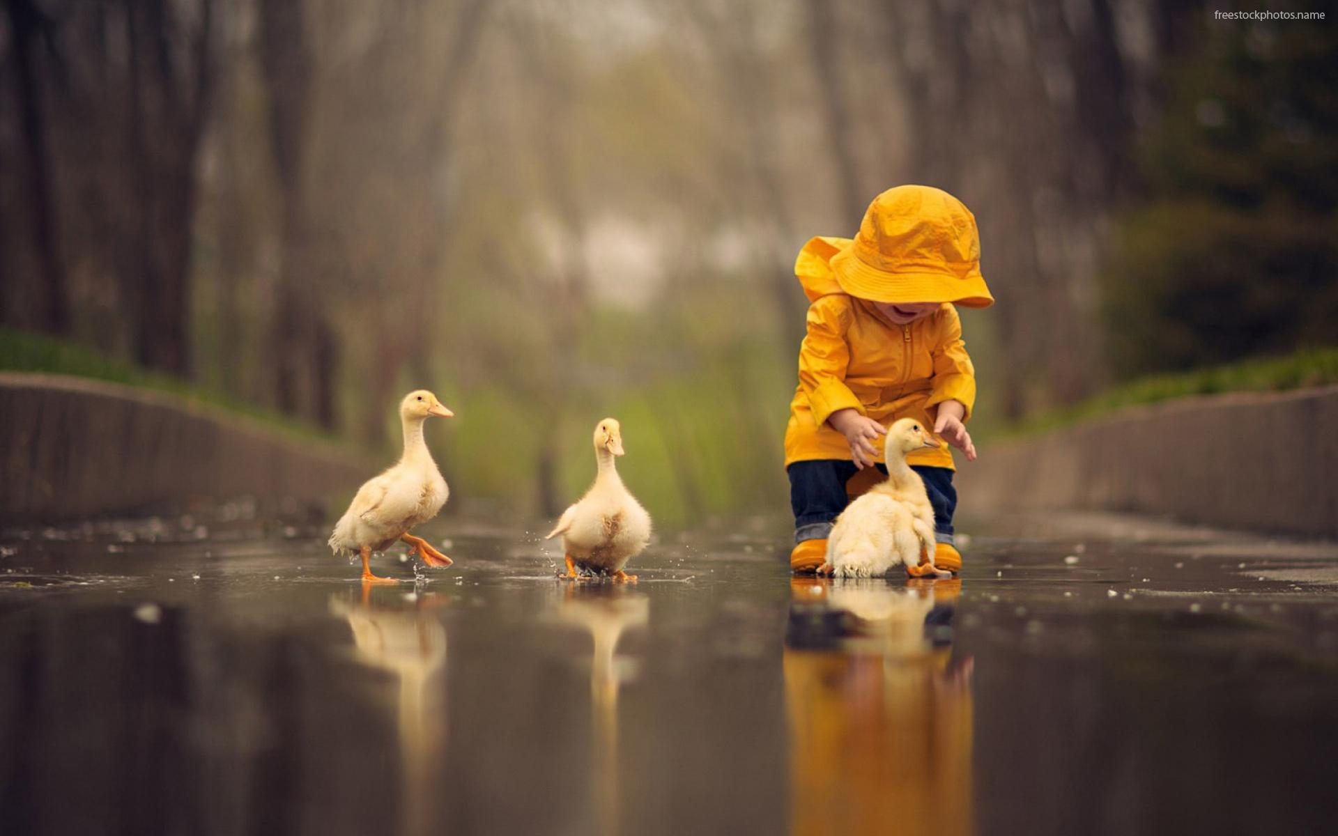 rain play children (19) (2016_11_29 04_58_35 UTC) (2018_06_06 09_18_44 UTC).jpg