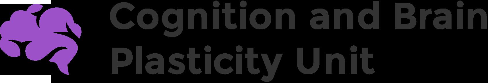 brainvitge-logo-lila.png