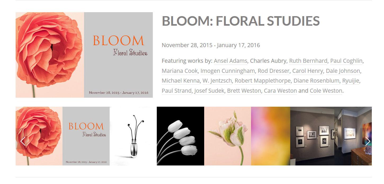 Bloom-Exhibition---Weston-G.jpg