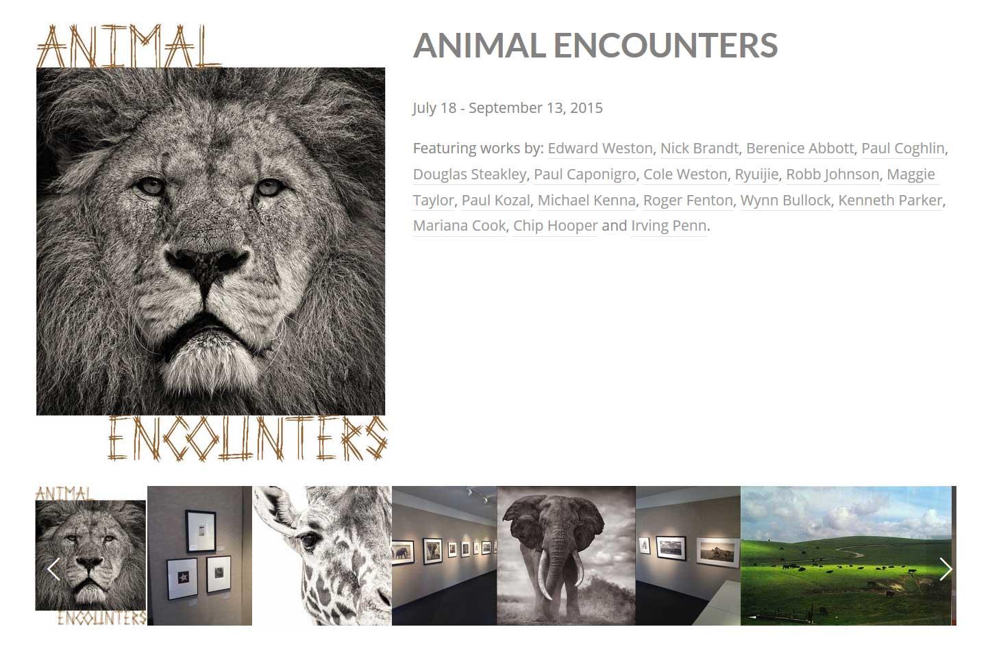 Animal-Encounters-Exhibitio.jpg